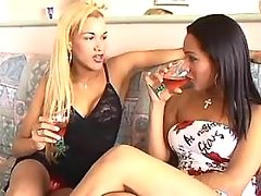 Yummy drunk shemales make oral love